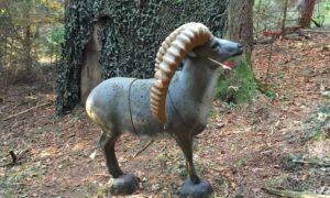 3D Bogenparcours – Freie Bogenschützen Oberfellendorf