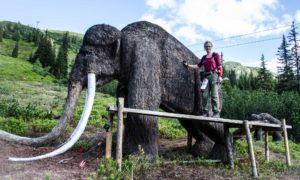 3D Bogenparcours Robin Hood Land – Planneralm Österreich