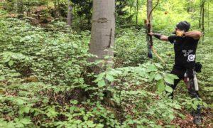 3D Parcours – Archery Parks – am Röthelfels [2018]