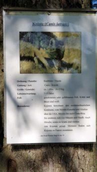 instarch 191012 2268 x 4032 17-bogenschiessen