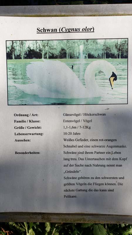 instarch 191012 2268 x 4032 8-bogenschiessen