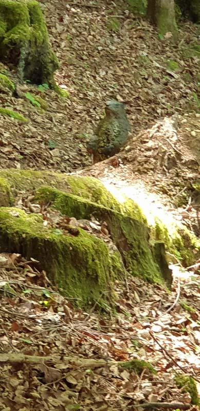 instarch 200601 1960 x 4032 47-bogenschiessen