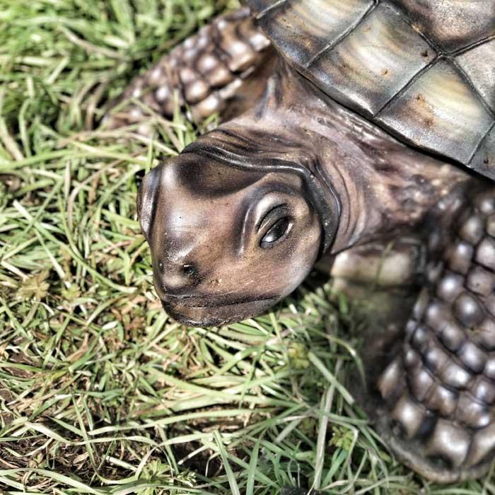 3D Parcours Bogenschiessen Ziel Schildkröte